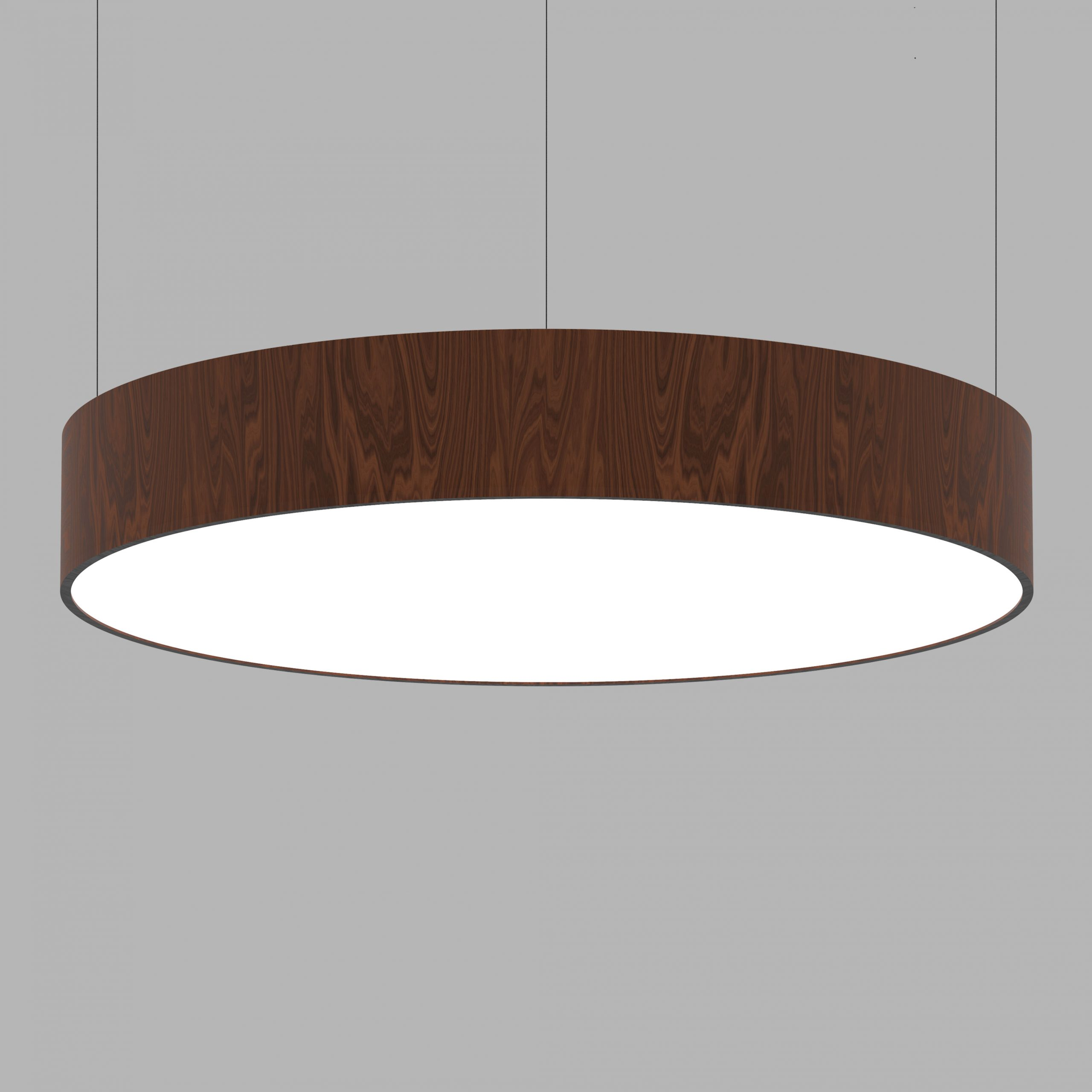CIRCULAR-PLATE-SUSPENDED